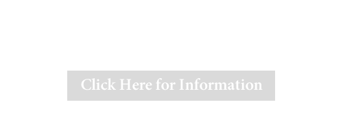 Voting Information